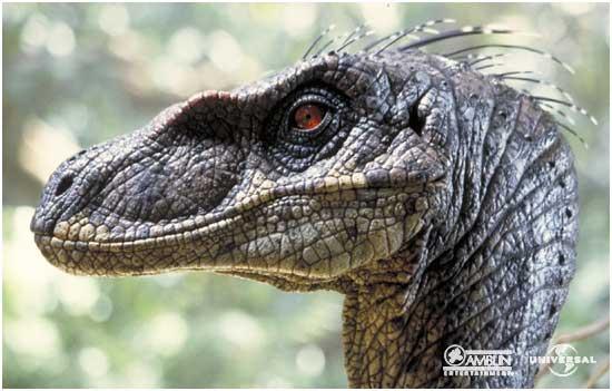 Velociraptor_portrait