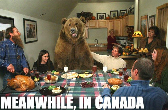 best-canadian-thanksgiving-memes