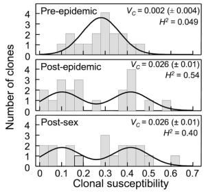 three panels: top showing a normal distribution of susceptibility, the bottom two showing a bimodal distribution